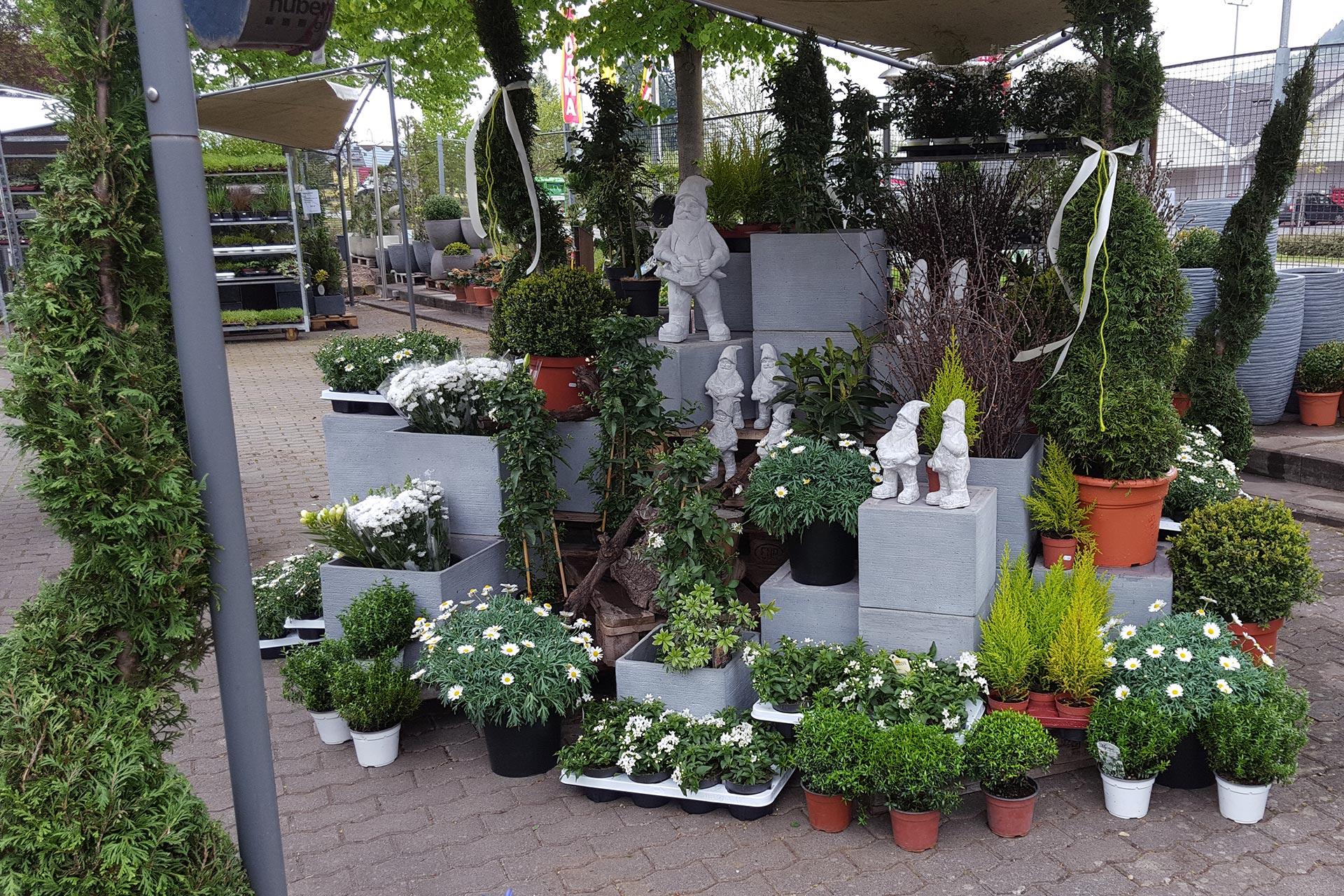 14 - Das Blumen- & Gartencenter Longuich