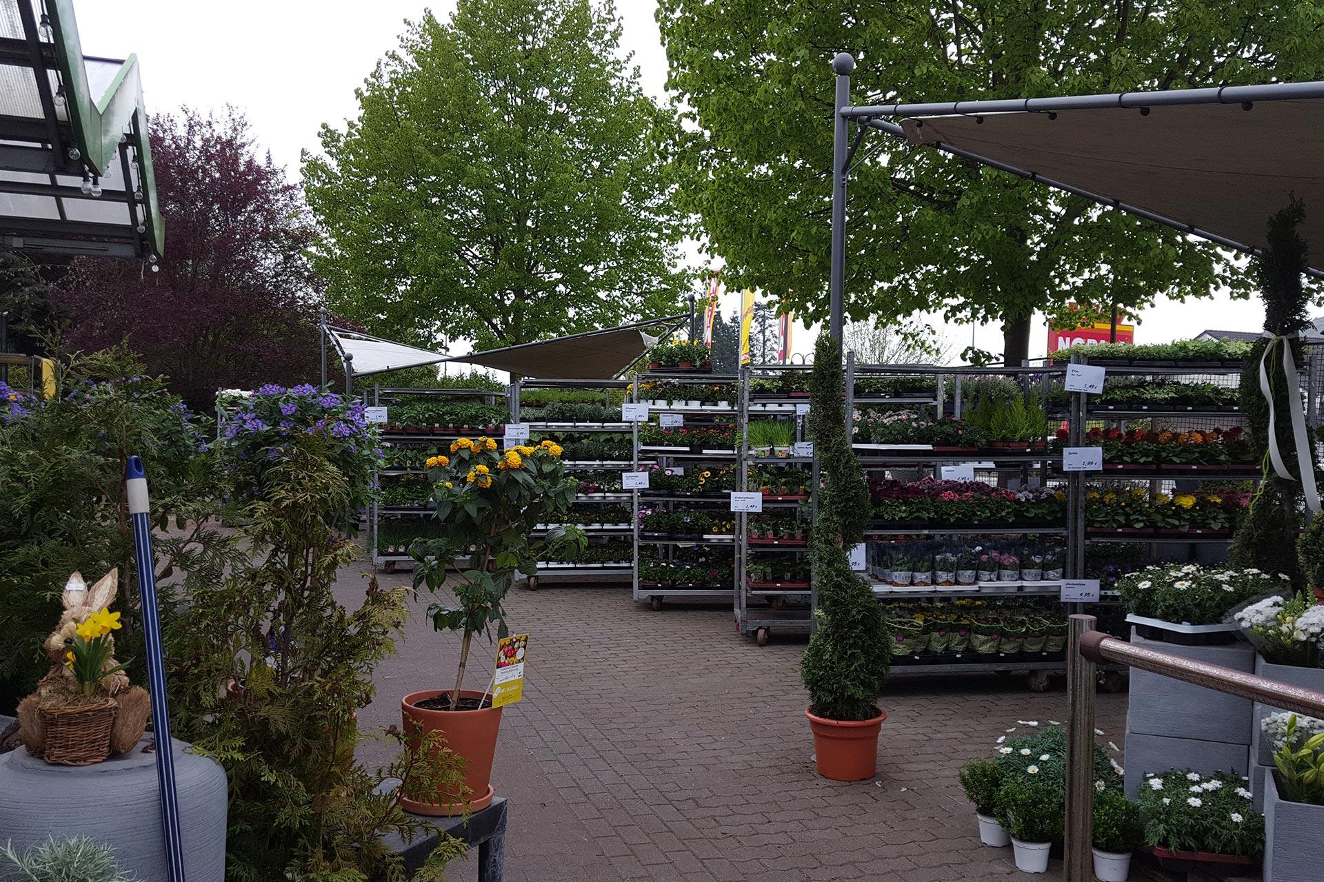 16 - Das Blumen- & Gartencenter Longuich