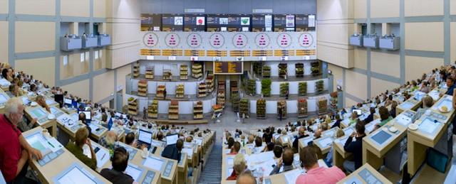 Versteigerung1 - Blumen-Großhandel